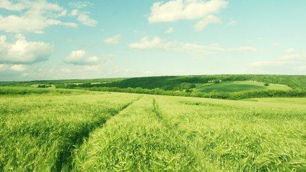 Green-meadow-scenery-laptop-widescreen-wallpaper-20150125132