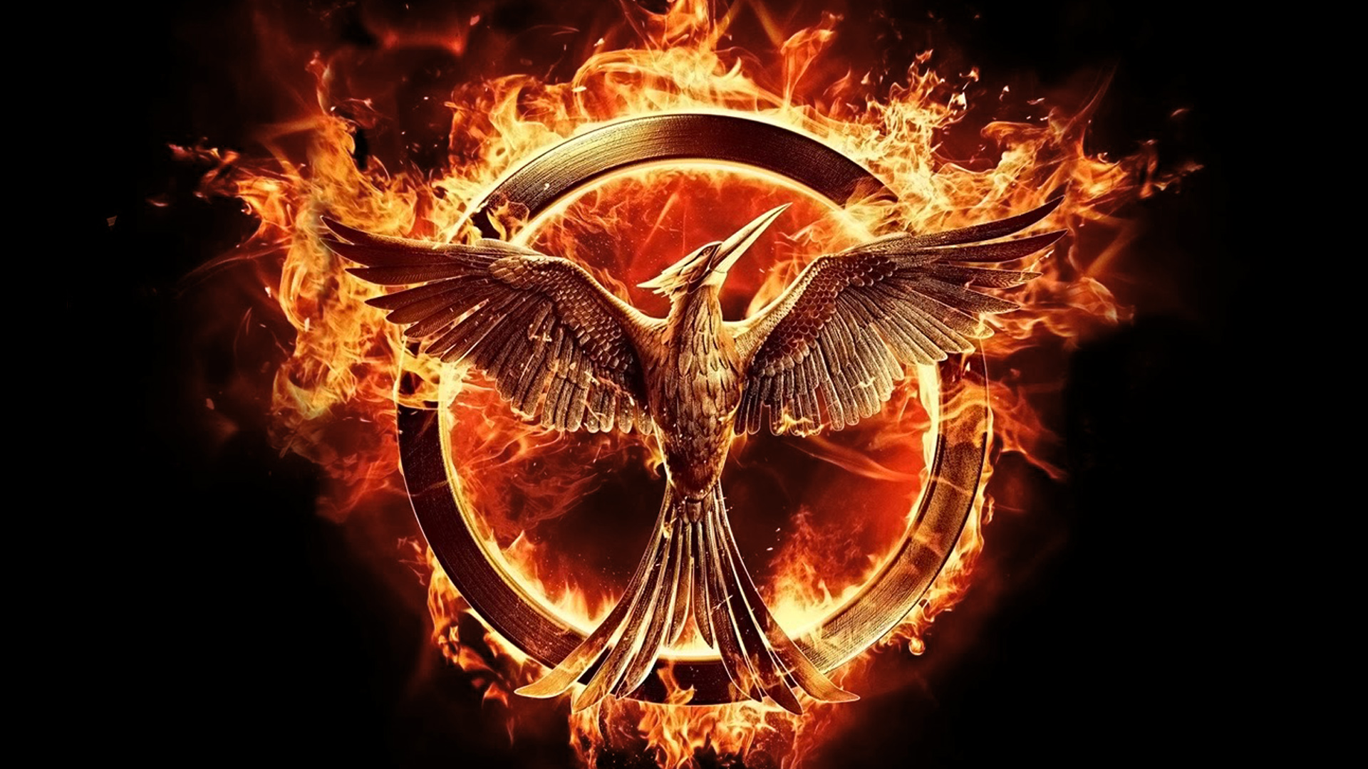 District 12 hartlandchronicles the odds in my favor reflections of the hunger games movies from a fan buycottarizona