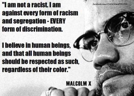 brainy-quotes-malcolm-x-1114-1