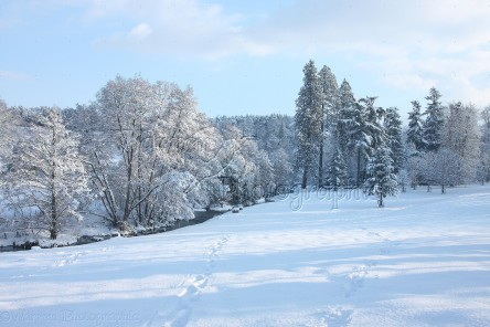 Albury Park snow scene
