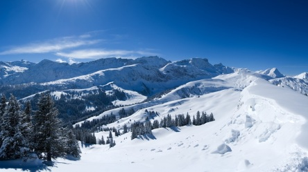 snow-wallpaper-4
